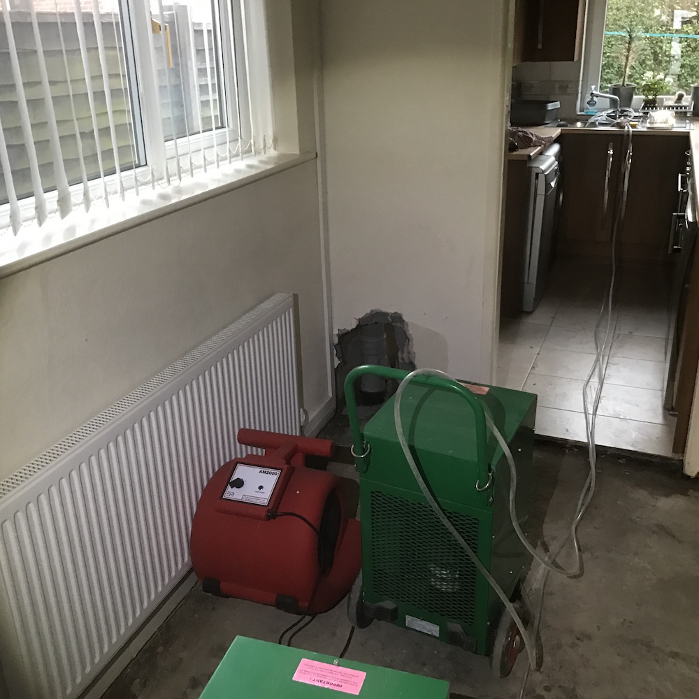 Forced drying with commercial grade air mover and dehumidifier following long term leak and damage to structure.